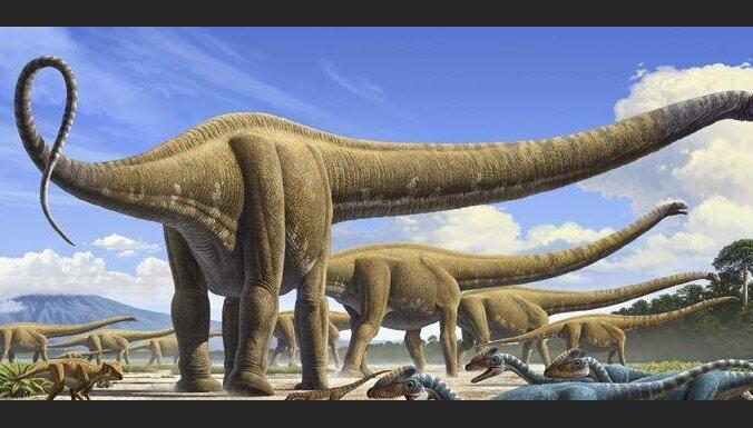 В Германии обнаружены останки 30-тонного маменчизавра