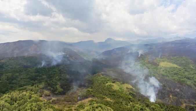 Apjomīgs ugunsgrēks Kenijā apdraud ievērojamu platību ar bambusu mežiem