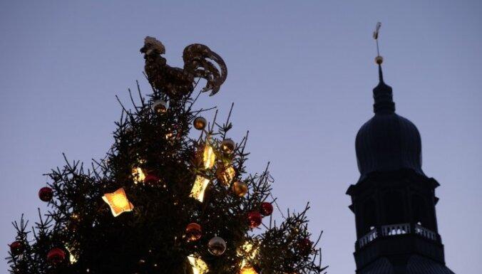 В Риге в этом году будет семь больших рождественских елок