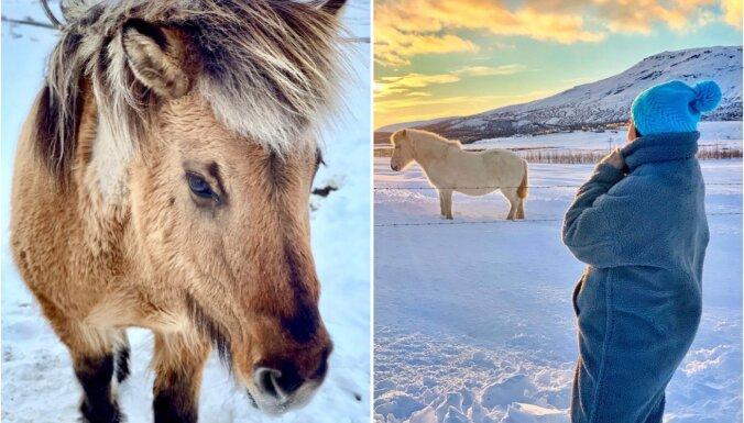 Itālijas vietā Islande: pasakains ceļojums ūdenskritumu, melno pludmaļu un geizeru zemē