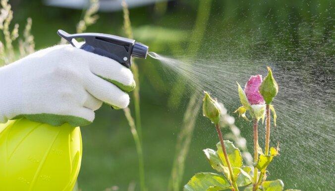 VAAD: līdz 1. aprīlim jāiesniedz pārskats par augu aizsardzības līdzekļiem