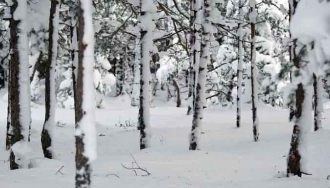 Visbiezākā sniega sega Rucavā - 52 centimetri