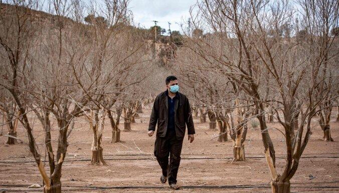 Maroka sāks vakcinācijas kampaņu pret jauno koronavīrusu