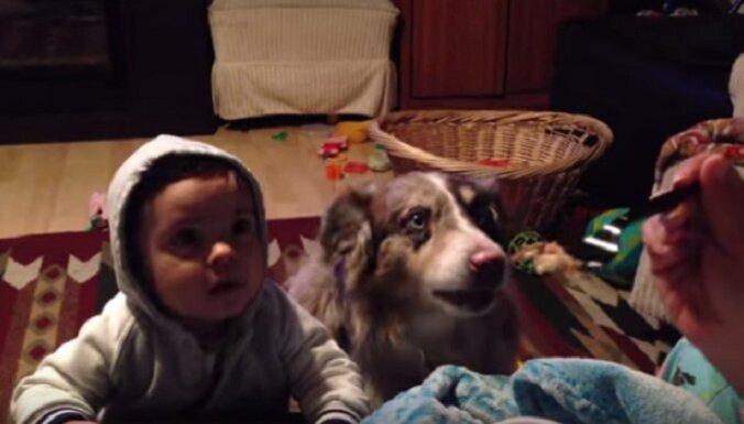 Dēliņ, vēlies ko gardu? Saki 'mamma'! Pirmais to pasaka… suns