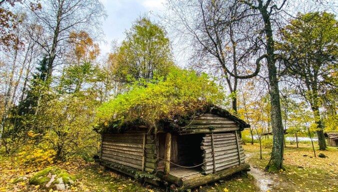 ФОТО. В часе езды от Риги: Арайшский археологический парк — уникальный музей под открытым небом