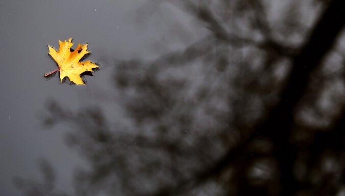 Синоптики: в пятницу будет пасмурно, воздух прогреется до +9 градусов