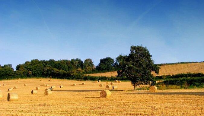 Латвийские крестьяне готовы поделиться с россиянами сеном