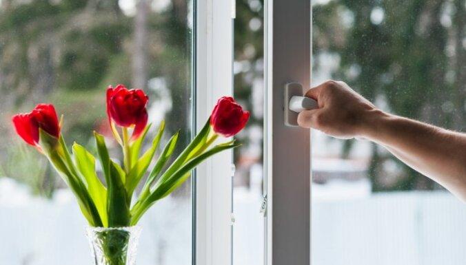 Kā izmazgāt putekļainās loga rāmja spraugas