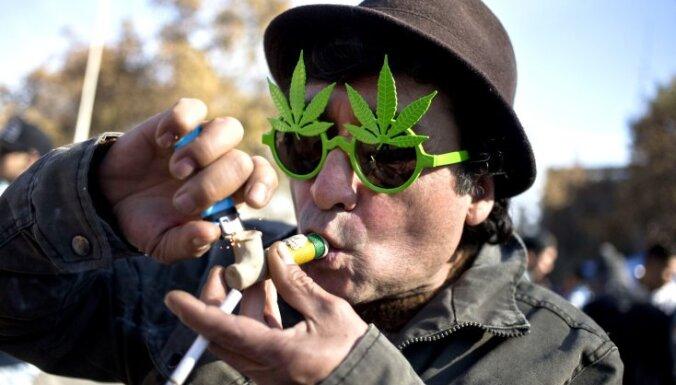 Опрос: каждый десятый житель Латвии — за легализацию марихуаны