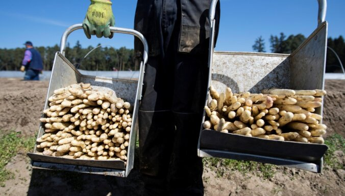 Vācija atvieglos noteikumus viesstrādniekiem lauksaimniecības sektorā