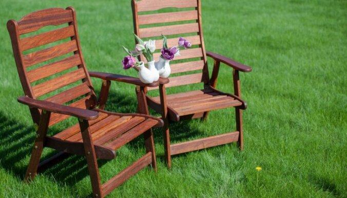 Комната под кроной дерева: как правильно выбрать садовую мебель?