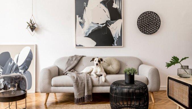 Interjera dizainere iesaka knifiņus, kā telpā iekļaut melno krāsu