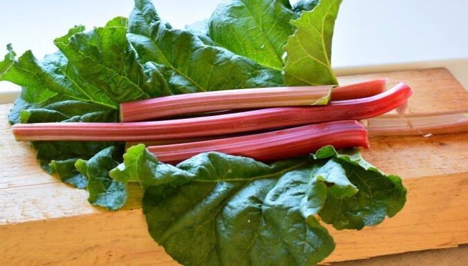 Rabarberu ietekme uz veselību un ieteikumi gardu ēdienu pagatavošanai