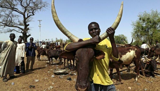 Cīņa par zemi: zemnieku un lopkopju sadursmēs Nigērijā 86 bojāgājušie