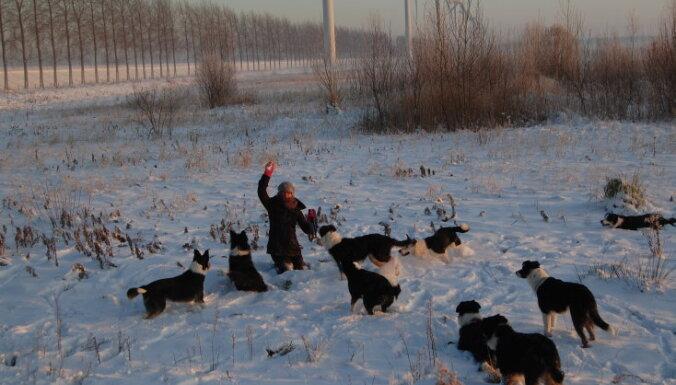 Ar piedzīvojumu dzirksti sirdī: pētniece Baiba, kura vēlas doties uz Ziemeļu polāro loku