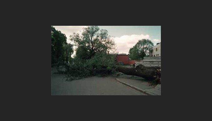 В Латвии сильный ветер