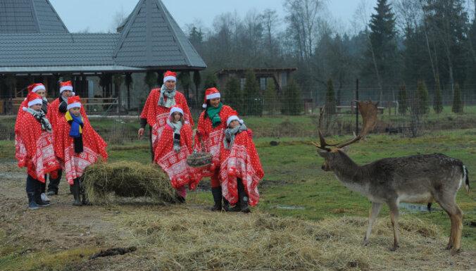 Novēlējumu konkurss - balvā iespēja apmeklēt briežu dārzu un Ziemassvētku vecīša rezidenci