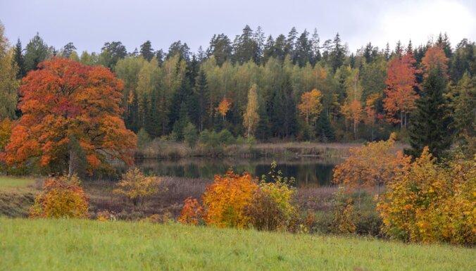 Nākamajās divās nedēļās gaisa temperatūra Latvijā saglabāsies virs normas
