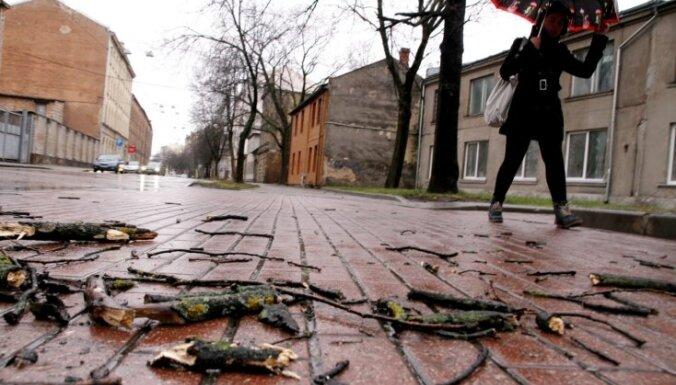 Rīgā stiprā vēja dēļ sakrituši zari un koki apgrūtina braukšanu (plkst.9:45)
