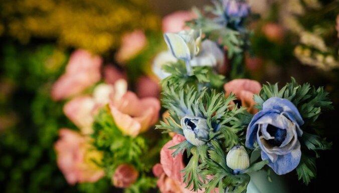Soli pa solim floristes vadībā: pavasarīga ziedu kompozīcija mājai