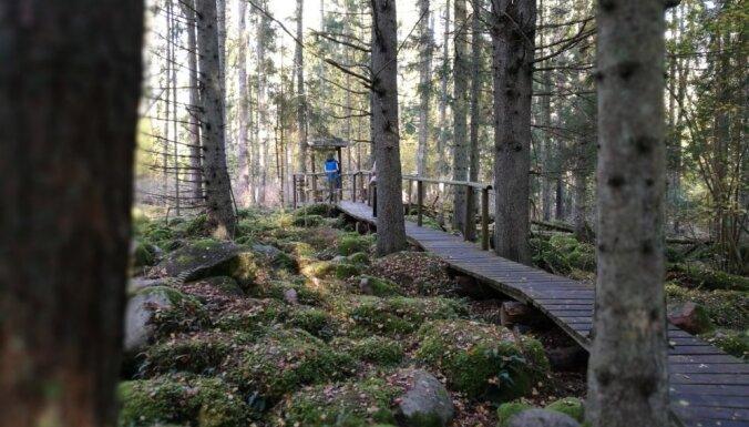 Apmeklētājiem līdz tūrisma sezonas sākumam nebūs pieejama Kalvenes kalvu dabas taka