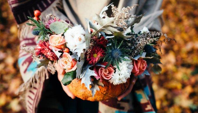 Padomu vācelīte: 13 pamācības burvīgiem rudens dekoriem