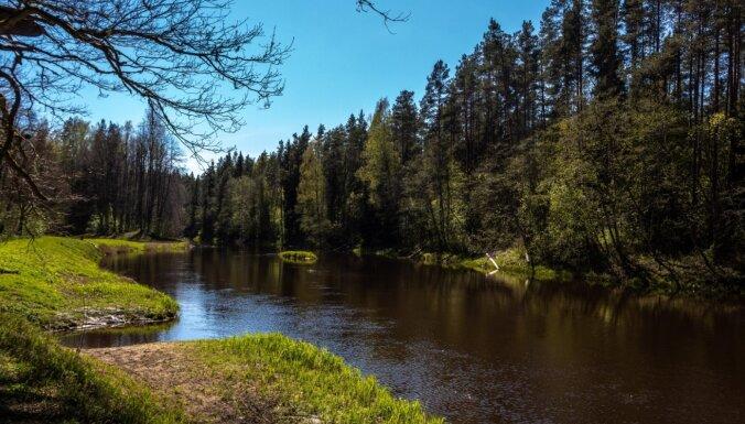 Золотая осень: 9 мест, куда можно поехать в Латвии вместо Сигулды