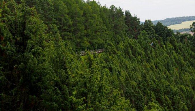 Interesantas vietas Lietuvā, kur sajust citu valstu šarmu