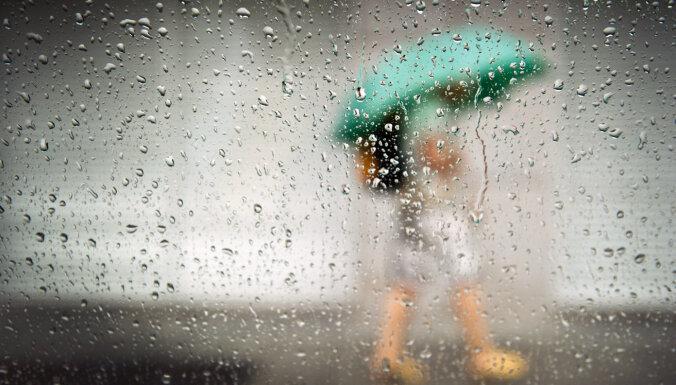 В ближайшие сутки местами ожидается кратковременный дождь и туман