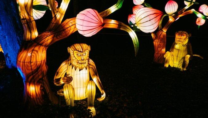 Ziemassvētki un bērnība reizē – gaismas festivāls Pakrojas muižā