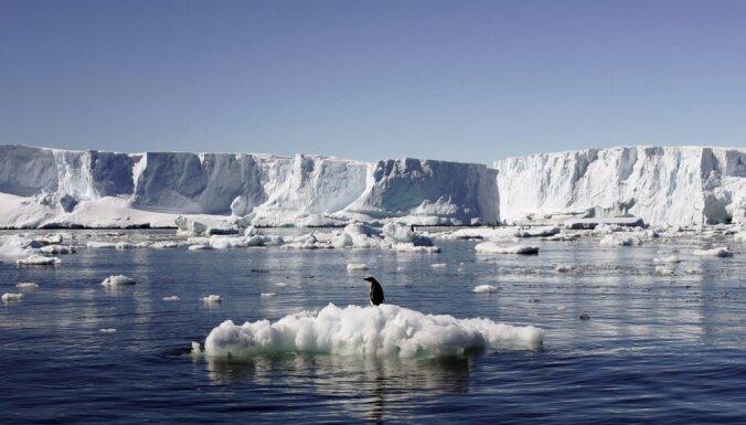 В Антарктике зафиксировали рекордно высокую температуру