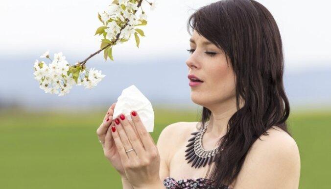 Putekšņu alerģija – arī vasaras problēma