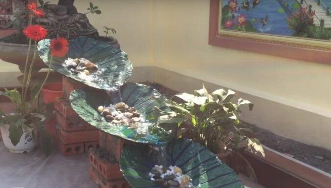 Iedvesmas deva: stilīgi dārza dekori ar cementā iespiestām augu lapām