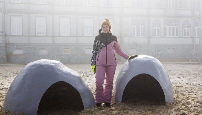 Студентка построила в Юрмале домики для детенышей тюленей