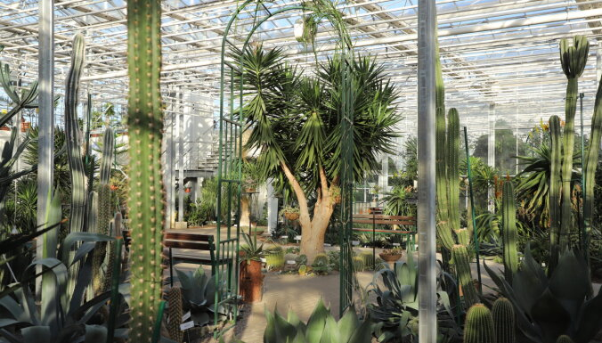 Nacionālajā botāniskajā dārzā katru ceturtdienu norisināsies stāstu vakari