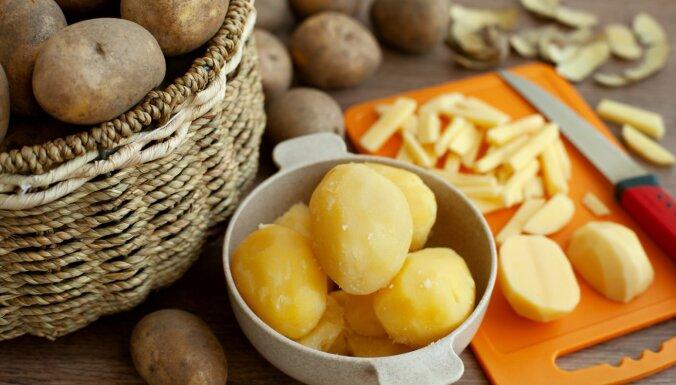 Nav kartupeļu, nav svētku: kādus izvēlēties rasolam, kādus cepšanai krāsnī