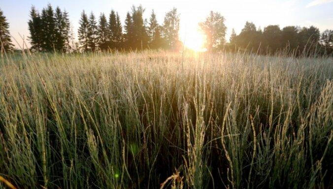Аномальная ночь: в трех местах Латвии побиты рекорды холода для 14 июля