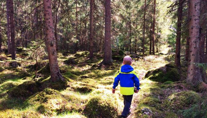 Ejam bekot jeb Kas jāņem vērā, ejot uz mežu ar bērnu