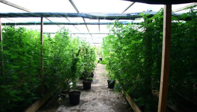 Latvijas tiesībsargājošās iestādes pērn konfiscējušas teju 900 kilogramus narkotiku