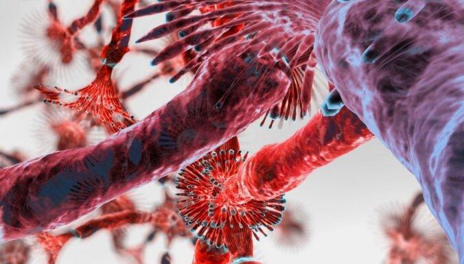 Ученые нашли в домашней пыли 9 тысяч видов микробов