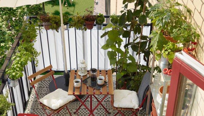 ФОТО. Используем время на карантине: как обустроить балкон без больших затрат