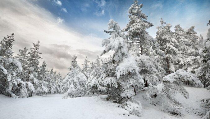 Ziemas pasaka Gaujas nacionālajā parkā: kur pabūt un ko izbaudīt