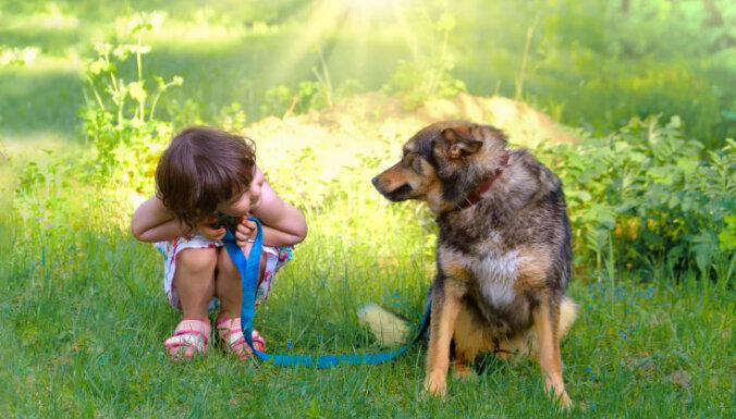 Gadu vecs puika gūst traumas, spēlējoties ar suni