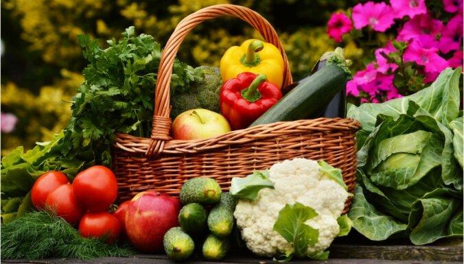 В свежести и сохранности. 5 лайфхаков, как правильно делать запасы овощей на зиму