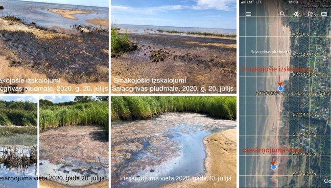 Foto: Pūstošas aļģes un kanalizācijas smaka – iestādes noliedz Salacgrīvas pludmales piesārņojumu