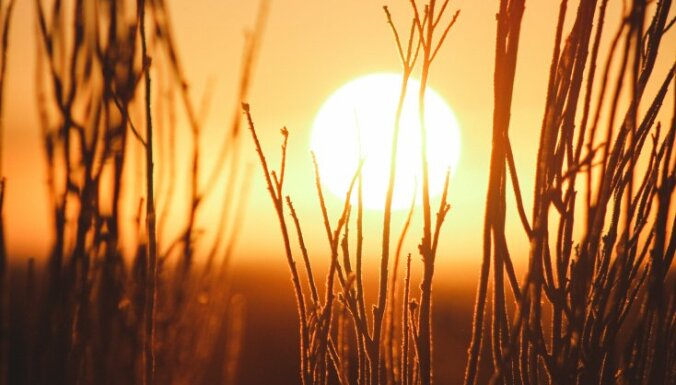 Dievturi aicina uz Laimas daudzinājumu 12. aprīlī