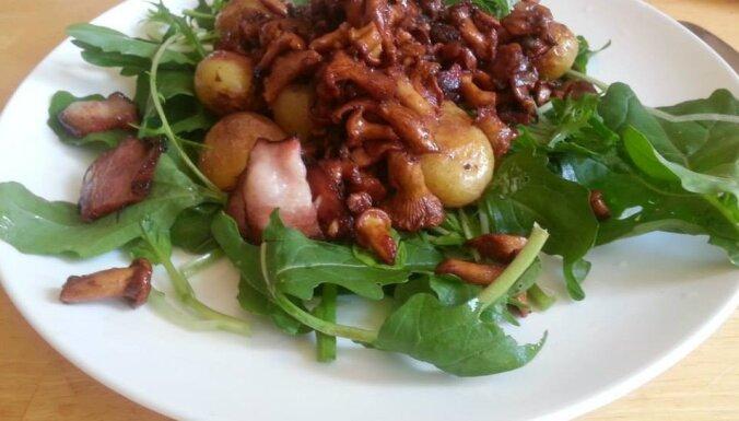 Fotorecepte: Fanijas karstie gaileņu salāti