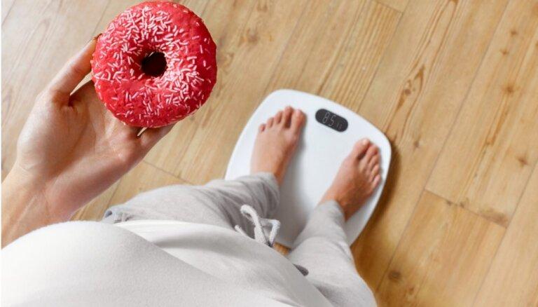 Весы защитят от переедания в новогодние праздники