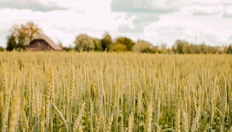 EP lauksaimniecības komitejā Baltiju pārstāv tikai lietuvieši; igauņu zemnieki pauž bažas