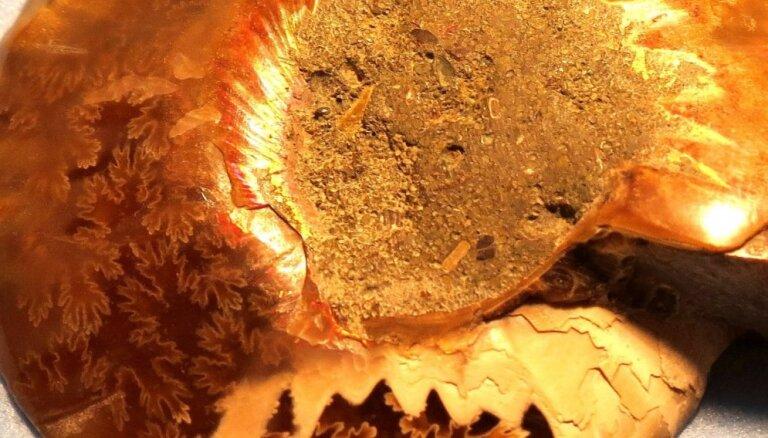 Aculiecinieka reportāža: Somijā atrod miljoniem gadu vecu fotogrāfiju